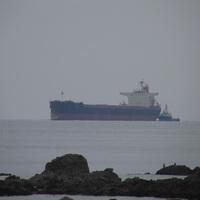 巨大石炭船入港