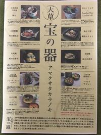 天草 宝の器(アマクサタカラノキ)