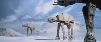 雪上ウォーク 雪国極上の朝