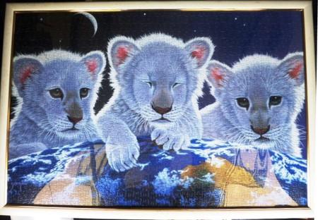 三匹の子ライオン