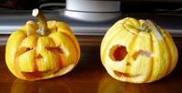 かぼちゃ~ん?のつぶやき