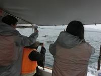 雨、風、波・・・・