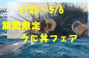 ウニ丼フェア