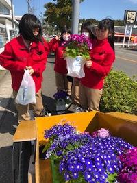 お花を買いました。