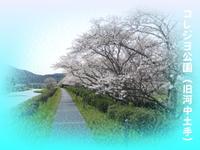 同窓会ブログで始めました(^_^)v