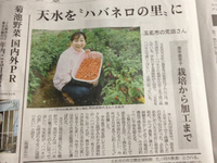 """激辛ハバネロ調味料""""辛司(しんし)"""""""