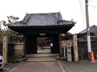 延慶寺の臥龍梅