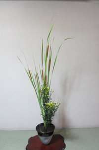 生花「姫蒲と黄小菊の二種生け」