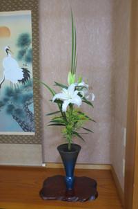 新生花「緑のすらりとした直線と大輪の百合との対比」