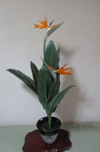 生花「ストレチアの一種生け」