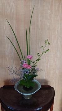 彩花「長葉のオクラレルカをなびかせて」