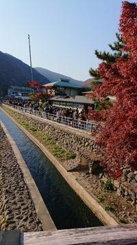 嵯峨野嵐山散策