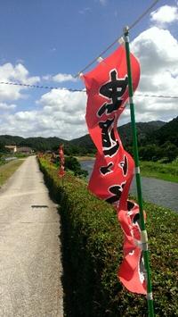 一町田虫追い祭りは明日だよ 2013/07/13 17:17:00