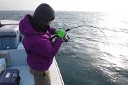 海南丸1月の釣果