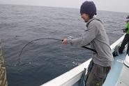 海南丸5月の釣果