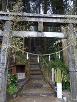 森の中にある。鳥居の右側には地元の人が用意したのだろう、竹の杖が置いてある。