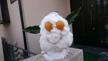 裏庭のキンカンの実とはっぱを利用したみたいである。ギズモ似の雪だるま。